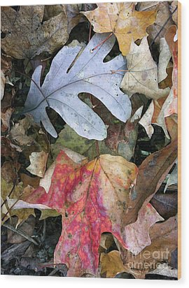 The Gathering Wood Print by Trish Hale