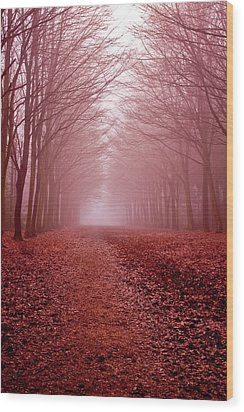 The Golden Path Wood Print by Aidan Minter