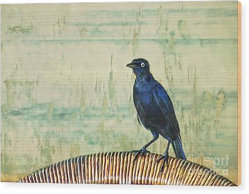 The Grackle Wood Print by John Edwards