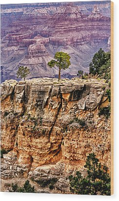 The Grand Canyon Iv Wood Print by Tom Prendergast
