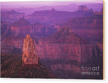 The Grand Canyon North Rim Wood Print by Bob Christopher