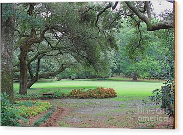Wood Print featuring the photograph The Great Lawn by Laurinda Bowling