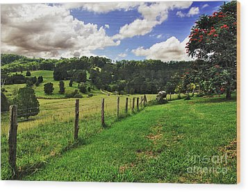 The Green Green Grass Of Home Wood Print by Kaye Menner