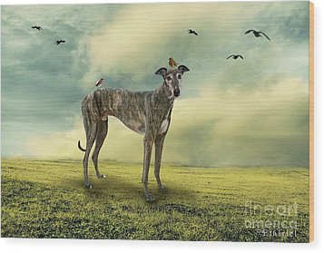 The Greyhound Wood Print by Ethiriel  Photography