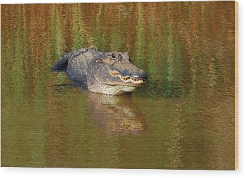 The Grin Wood Print by Kathy Gibbons