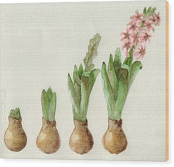 Wood Print featuring the painting The Growth Of A Hyacinth by Annemeet Hasidi- van der Leij