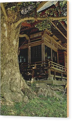 Wood Print featuring the photograph The Hidden Shrine 2 by Tim Ernst