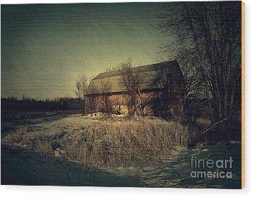 The Hiding Barn Wood Print by Joel Witmeyer