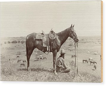 The Horse Wrangler, Photograph By Erwin Wood Print by Everett