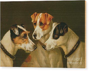 The Hounds Wood Print
