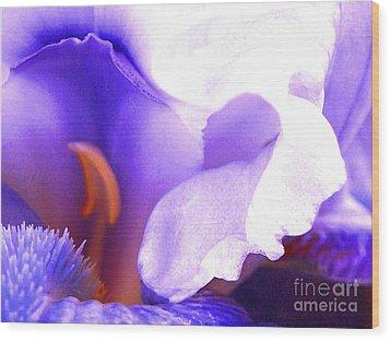 The Intimate Iris Wood Print by Jerome Stumphauzer