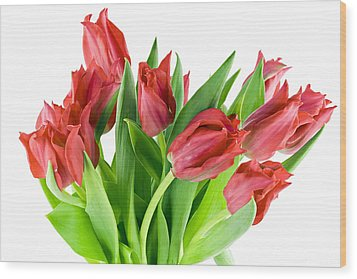 Wood Print featuring the photograph The Isolated First Spring Tulips Background by Aleksandr Volkov