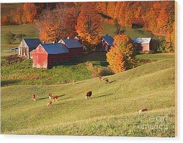 The Jenne Farm Wood Print by Butch Lombardi