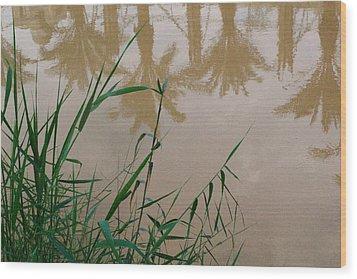 The Jordan River Wood Print by David George