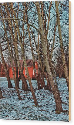 Wood Print featuring the photograph The Leaning by Rachel Cohen