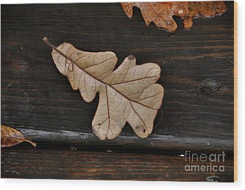 The Leaves Wood Print by Tamera James