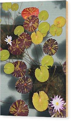 The Lily Pond Wood Print by James Mancini Heath
