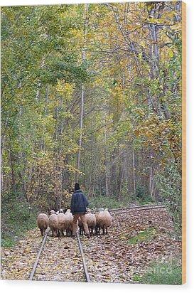 The Little Shepherd Wood Print by Issam Hajjar