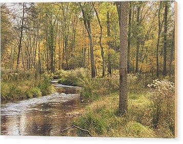 The Lost Creek Wood Print by Cindy Rubin