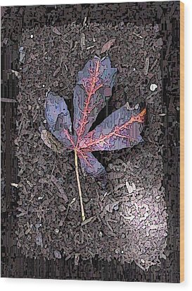 The Maple 5 Wood Print by Tim Allen