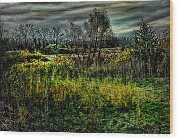 Wood Print featuring the digital art The Marsh by Kimberleigh Ladd
