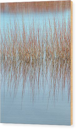 The Marsh Mirror Wood Print by Loree Johnson
