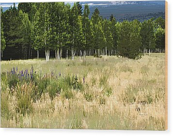 The Meadow Digital Art Wood Print by Phyllis Denton