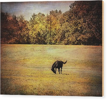 The Meadow Wood Print by Jai Johnson