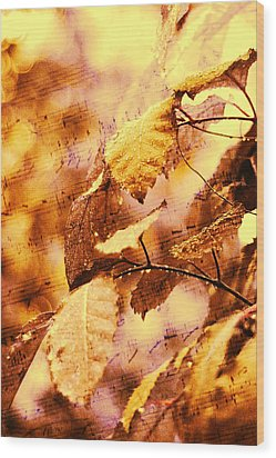 The Melody Of The Golden Rain Wood Print by Jenny Rainbow