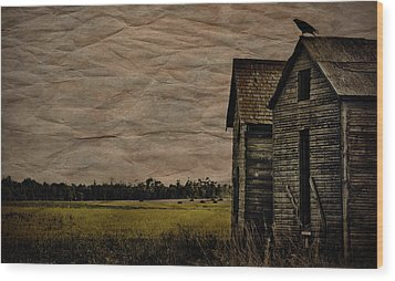 The Messenger  Wood Print by Jerry Cordeiro