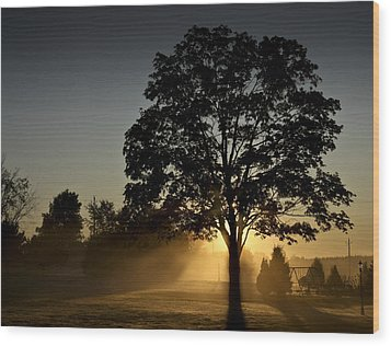 Wood Print featuring the photograph The Morning Light by Nick Mares