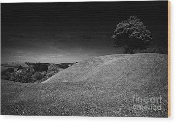 The Mound Of Down Downpatrick County Down Northern Ireland Wood Print by Joe Fox