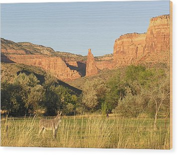 The Mule And Independence Rock Wood Print