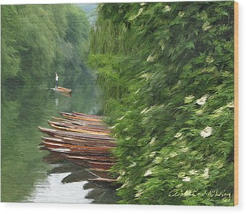 The Neckar River Wood Print by Nikolay Vakatov