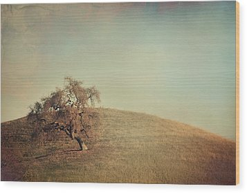 The Neverending Loneliness Wood Print by Laurie Search