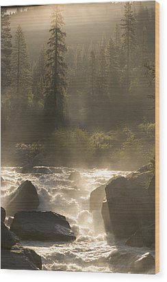 The North Fork Of The Stanislaus River Wood Print by Phil Schermeister
