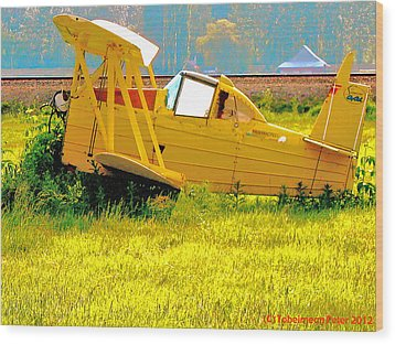 The Old Crop-duster Wood Print