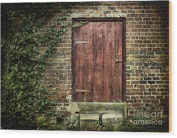 The Old Red Door Wood Print by Sari Sauls