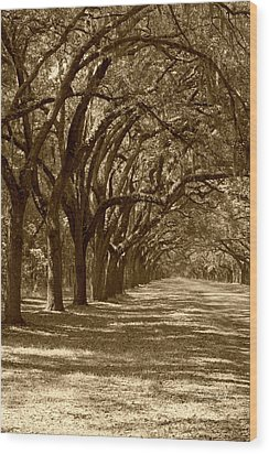 The Old South Series In Sepia Wood Print by Suzanne Gaff