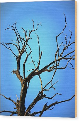 The Old Tree Wood Print by Mara Barova