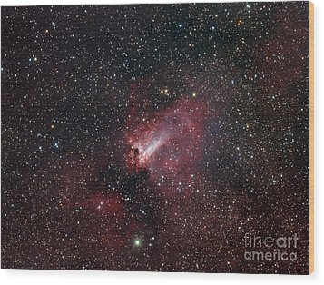 The Omega Nebula Wood Print by Filipe Alves