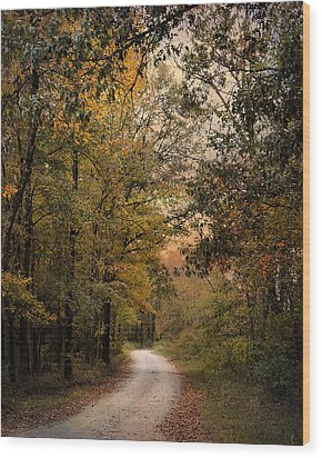 The Path Less Traveled 2 Wood Print by Jai Johnson