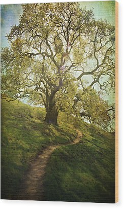 The Path To Brighter Days Wood Print by Laurie Search
