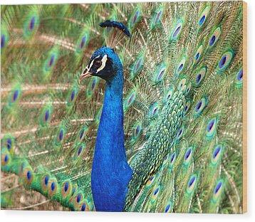 The Peacock Wood Print by Paul Ge