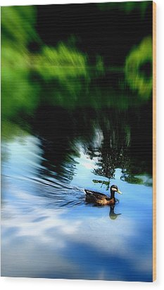 The Pond - Central Park Nyc Wood Print by Maria Scarfone