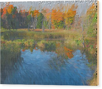 The Pond Next Door Wood Print by Mario Carini