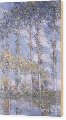 The Poplars Wood Print by Claude Monet