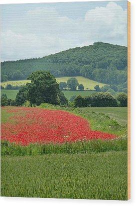 The Poppy Field. Wood Print by Debra Collins