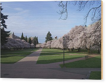 Wood Print featuring the photograph The Quad by Jerry Cahill