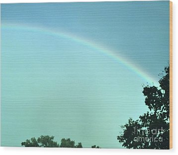 The Rainbow Is A Sign Wood Print by Marsha Heiken